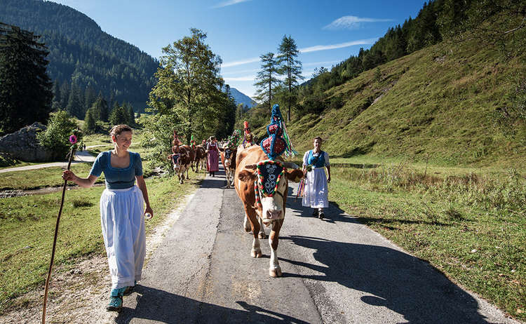 Die Sennerinnen beim Almabtrieb mit ihren Kühen
