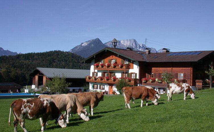 Aschbachhof 3