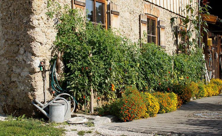 Bauerngarten Rupertiwinkel Berchtesgaden