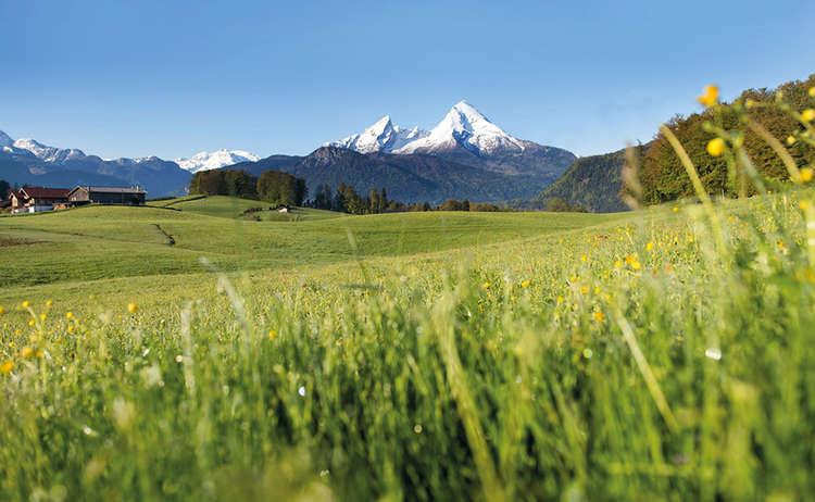 Bergbauernmilch Watzmann