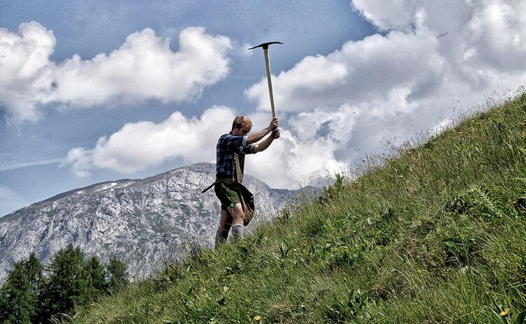 Der Bergbrenner der Enzianbrennerei Grassl beim Wurzelgraben