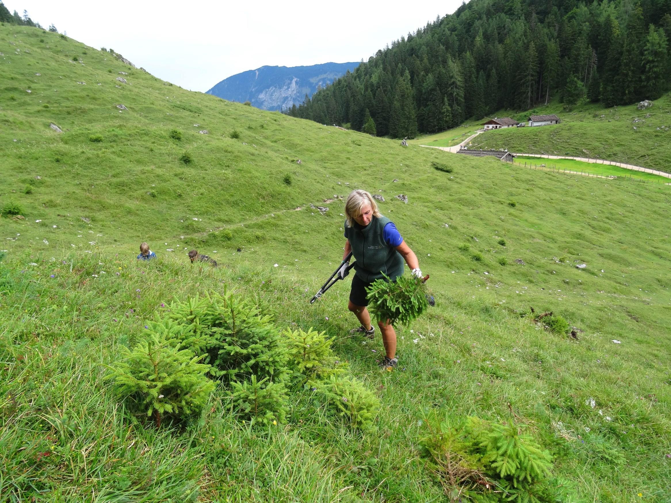 Biosphaerenregion Berchtesgadener Land Schuetzen Unterstuetzen 207