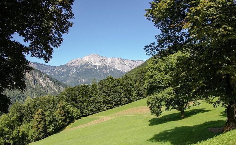 Blick von Oberau zum Untersberg