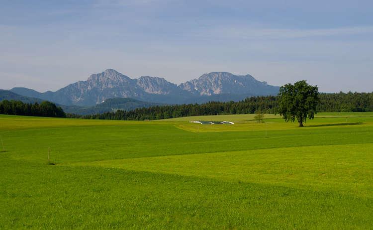 Blick Auf Hochstaufen Und Zwiesel Bei Teisendorf