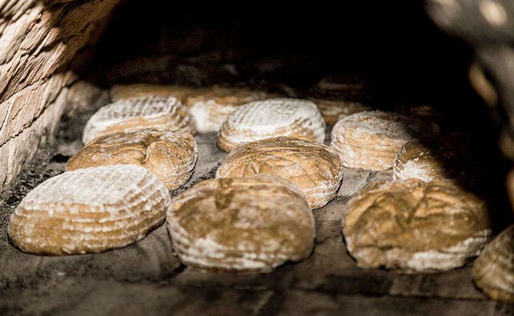 Brotbacken | Bioerlebnis | Ökomodellregion © Daniel Delang / ÖMR