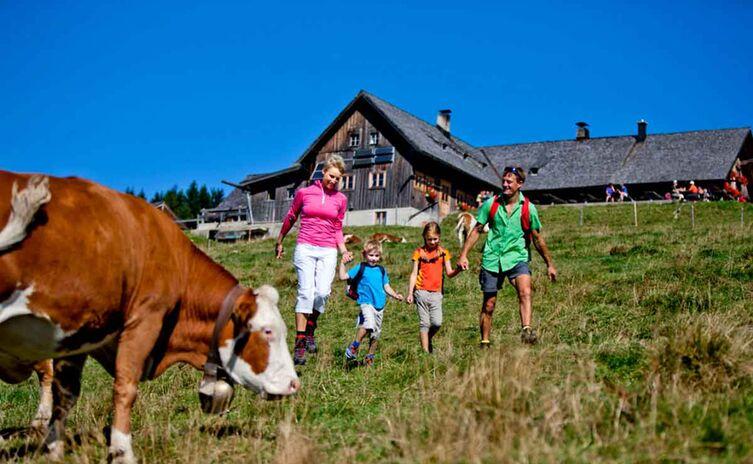 Familien Wanderung Stoißer Alm