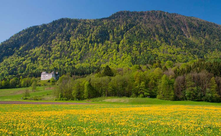 Fuderheuberg hinter Schloss Staufeneck Piding