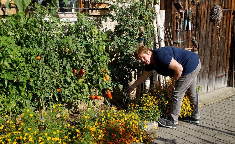 Garten Baeuerinthea Goetzinger Rupertiwinkel