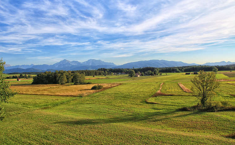 Haarmoos Landschaftsschutzgebiet Saaldorf Surheim