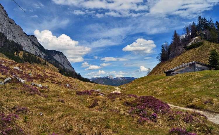 Halsalm, mountain pasture