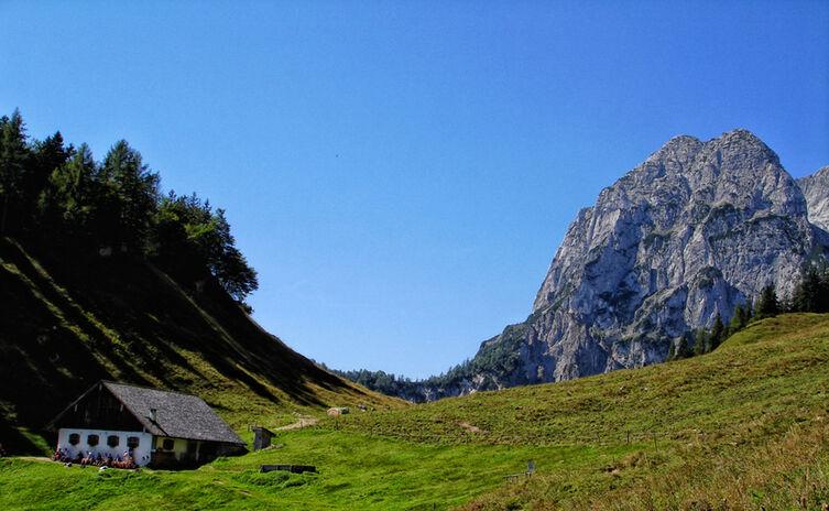 Die Halsalm im Bergsteigerdorf Ramsau