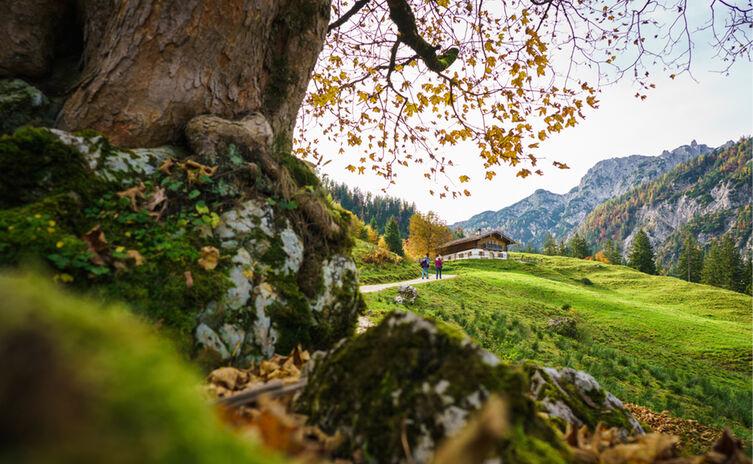 Herbstwanderung zur Ragertalm im Klausbachtal
