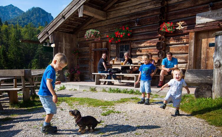 Kinder spielen auf der Harbachalm