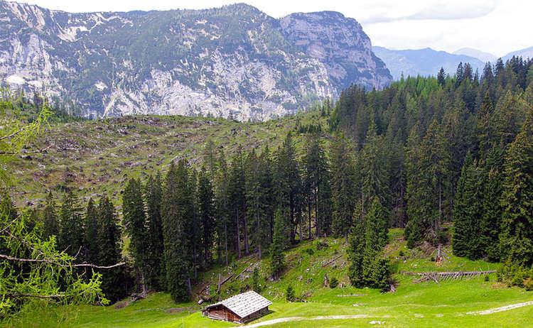 Lattenbergalm Berchtesgaden