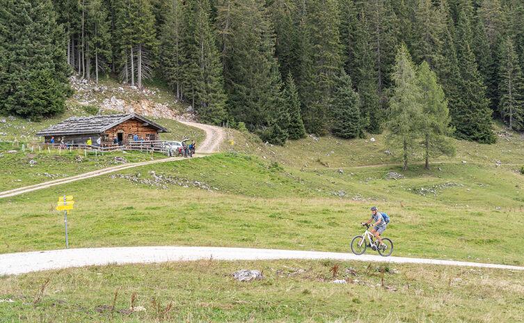 Moosenalm Mountainbike