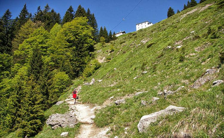 Mountainbike Tour Und Wanderung Zur Zwieselalm