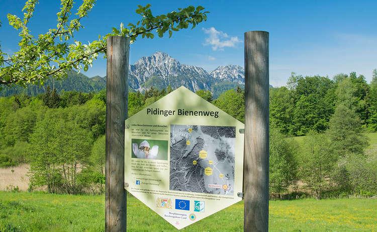 Pidinger Bienenweg