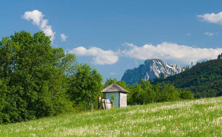 Salzburgblick Weg Teisendorf