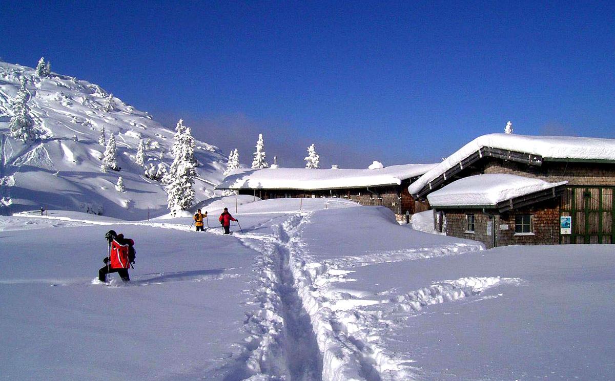 Schneehöhen alpen aktuell