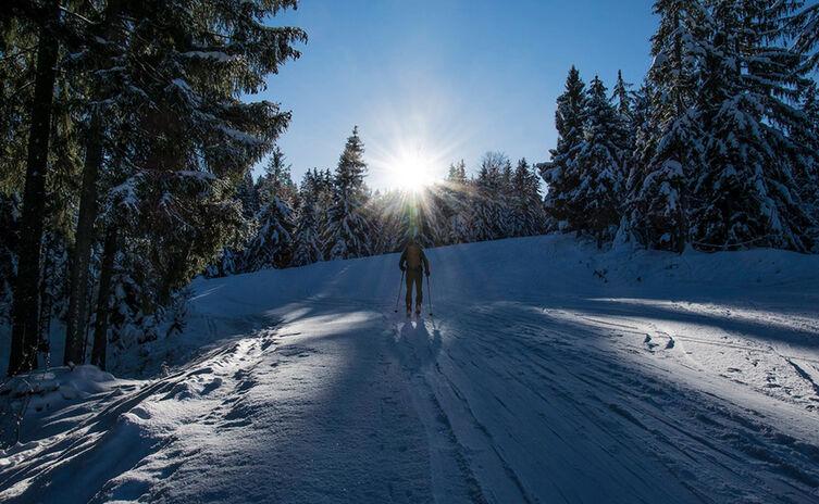 Morgendliche Skitour am Götschen