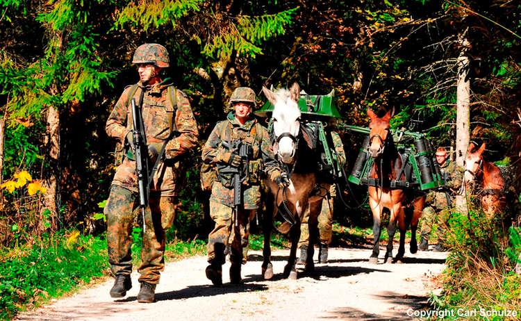 Soldaten Mulis Waffentransport