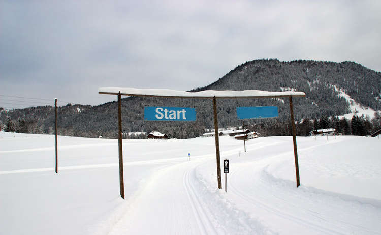 Startgate