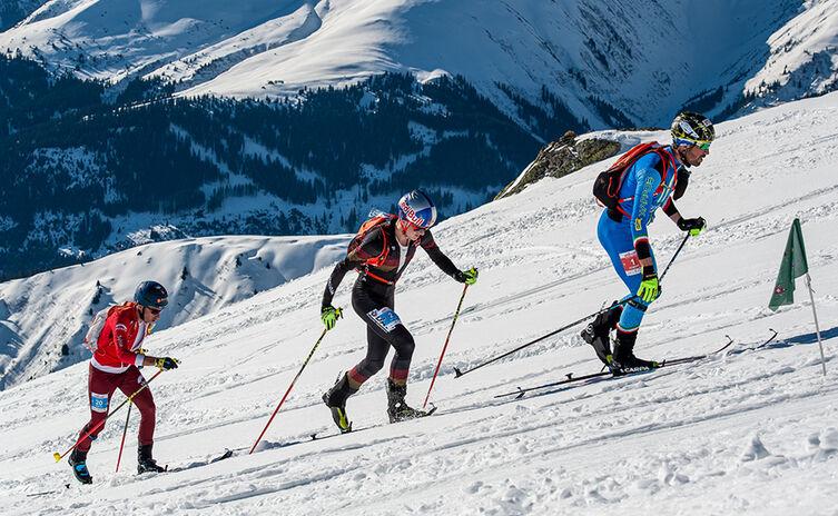 Toni Palzer | Skibergsteiger