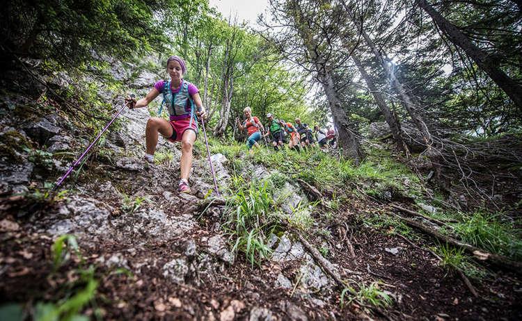 Trailraid Downhill Www Wisthaler