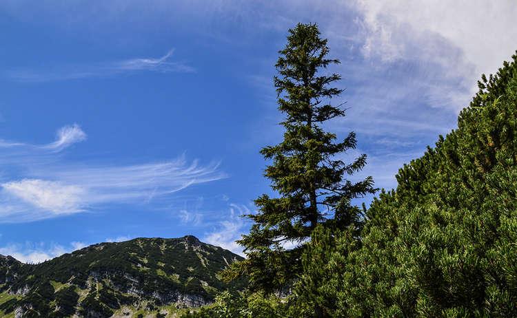 Wandern Im Lattengebirge