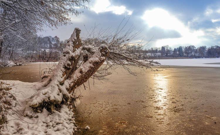 Winter Abtsdorfer See Rupertiwinkel Winterwandern Manfred Fiedler