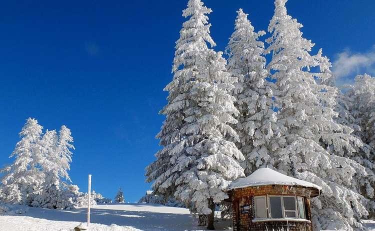 Winter am Predigtstuhl © Erich Steindl