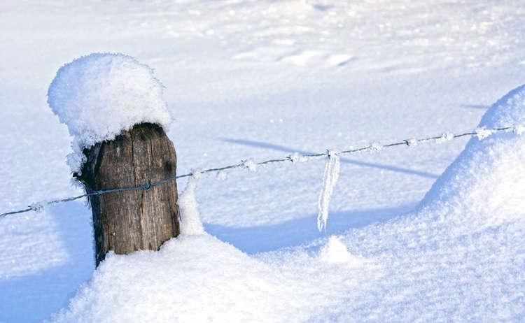 Winter Detailaufnahme