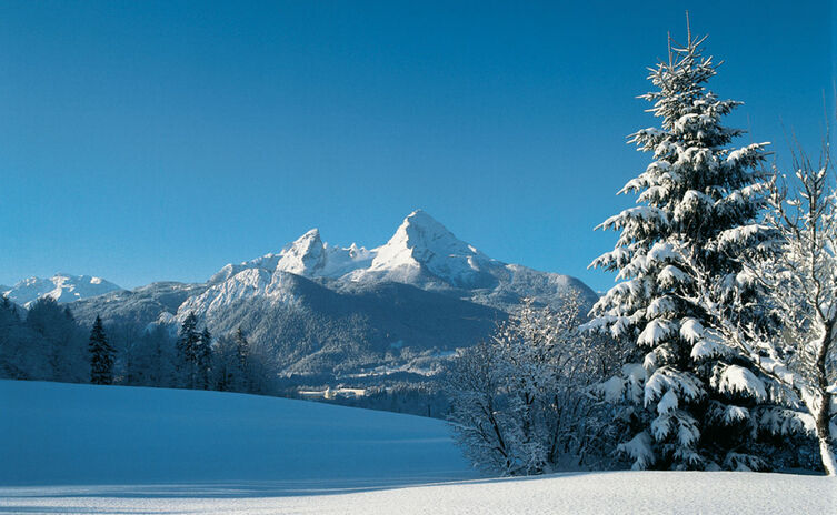 Winter im Nationalpark Berchtesgaden
