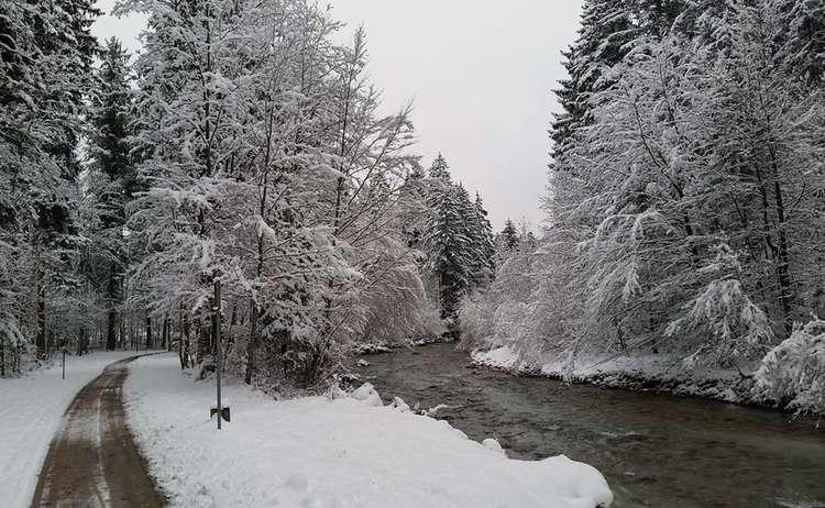 Winter Wandern An Der Ache