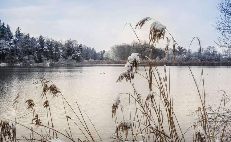 Winterwandern Abtsdorfer See Rupertiwinkel Manfred Fiedler