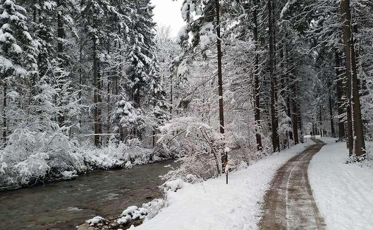 Winterwandern An Der Ramsau