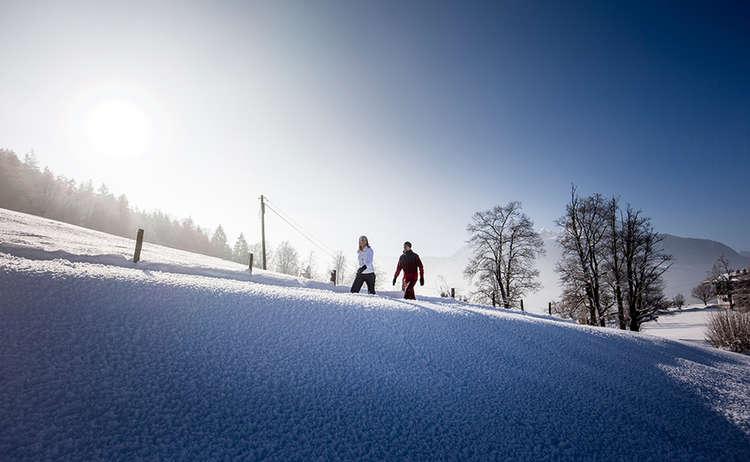 Winterandern: Eindrucksvolle Naturerlebnisse