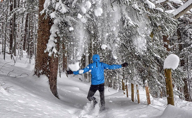 Winterwandern Wald
