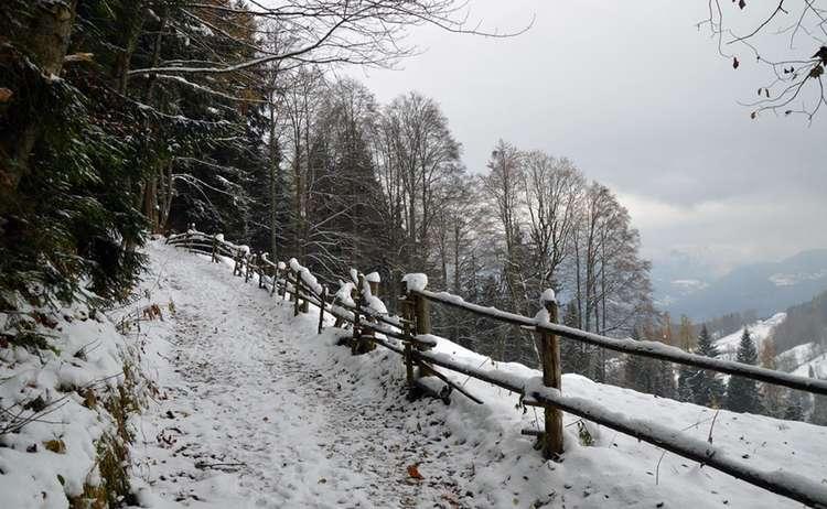 Winterwanderung Auf Den Brandkopf