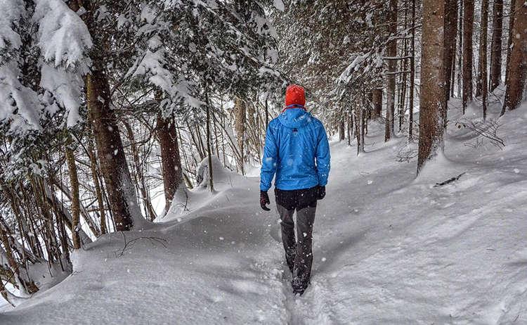 Winterwanderung Bischofswiesen Maximilians Reitweg