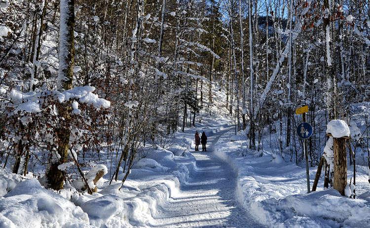 Winterwanderung Zum Malerwinkel Koenigssee