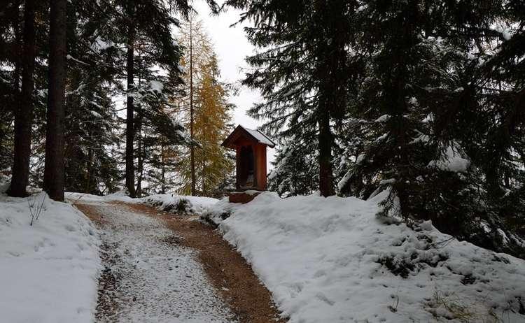 Winterwanderweg Brandkopf